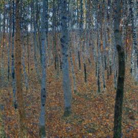 Beržų miškas